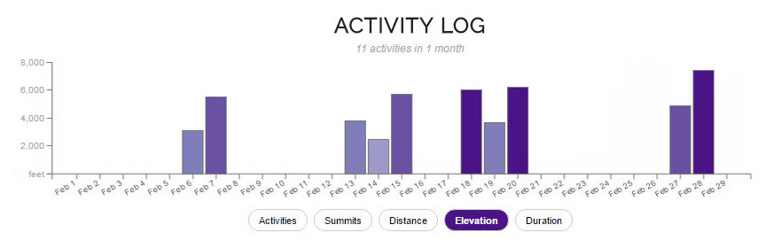 Activity Log heat map
